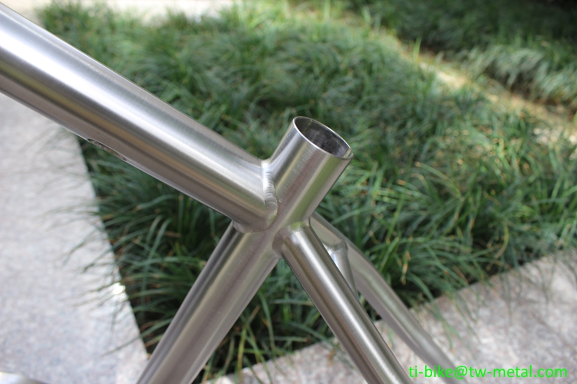 Custom titanium Pinion gear box MTB bike frame